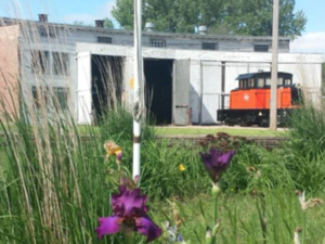 Purple flowers in foreground, train and garage in background